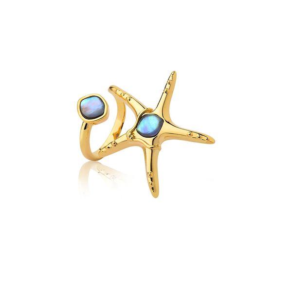 Anel-Starfish-Abalone